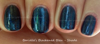 Barielle Blackened Bleu Shade